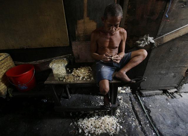 Filipino Antonio Panganiban peels the skin off garlic cloves outside his makeshift home at a slum in Manila, Philippines, Sunday, February 28, 2016. Panganiban is paid 50 pesos ($1) for 10 kilograms of peeled garlic. (Photo by Aaron Favila/AP Photo)