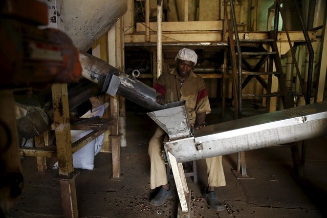 A worker operates a machine at a cocoa processing factory in Ile-Oluji village in Ondo state, southwest Nigeria March 29, 2016. (Photo by Akintunde Akinleye/Reuters)