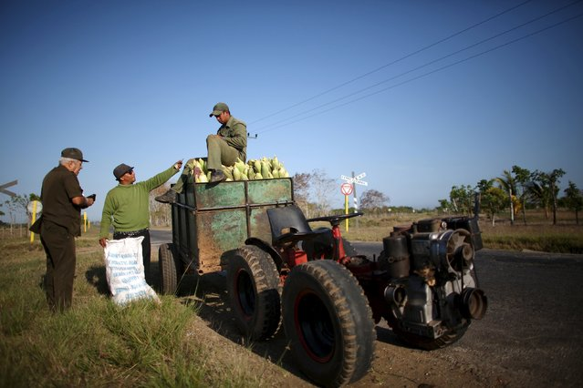 Farmers Wilber Sanchez, 30 (C), and Dusniel Pacheco, 32 (R), sell corn to an army officer on the highway near San Antonio de los Banos in Artemjsa province, Cuba, April 13, 2016. (Photo by Alexandre Meneghini/Reuters)