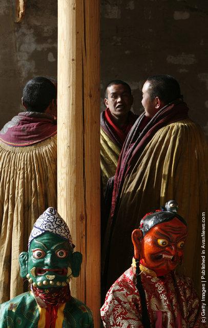 Lamas wait to dance