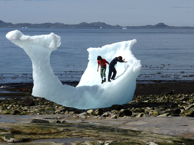 Children play amid icebergs on the beach in Nuuk, Greenland, June 5, 2016. (Photo by Alister Doyle/Reuters)