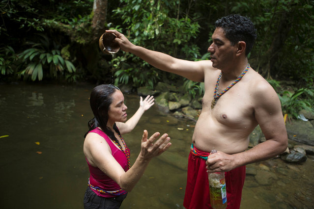 A woman receives a purification bath at the well of San Juan of the Money at the Sorte Mountain on the outskirts of Chivacoa, in the state of Yaracuy, Venezuela October 11, 2015. (Photo by Marco Bello/Reuters)