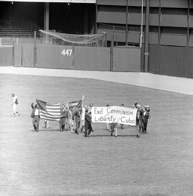 "A group of Cuban demonstrators consisting of twelve men, two boys and a woman, were arrested by police at Connie Mack Stadium in Philadelphia on August 25, 1963 after running onto the playing field in the 4th inning of a game between the Phillies and Pittsburgh Pirates. Tony Gonzales, left, walks away from the group who surrounded him in center field as they carried an America flag, Cuban flag and white banner with, ""End Communism, Liberty for Cuba"" on it. (Photo by John F. Urwiller/AP Photo)"