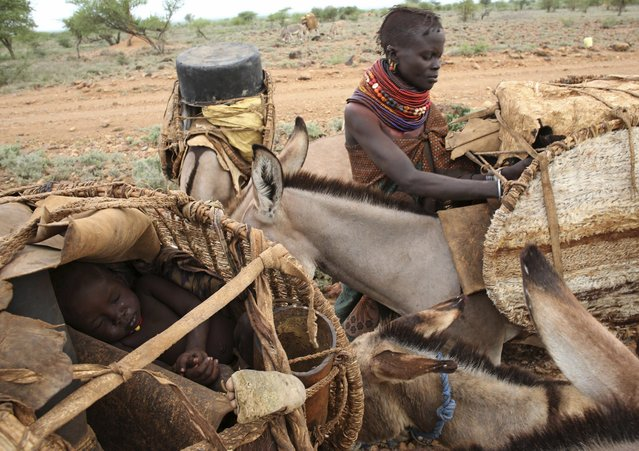 A sick Turkana child sleeps inside a basket on a donkey as his family relocates to another place due to insecurity in northwestern Kenya inside the Turkana region of the Ilemy Triangle September 26, 2014. (Photo by Goran Tomasevic/Reuters)