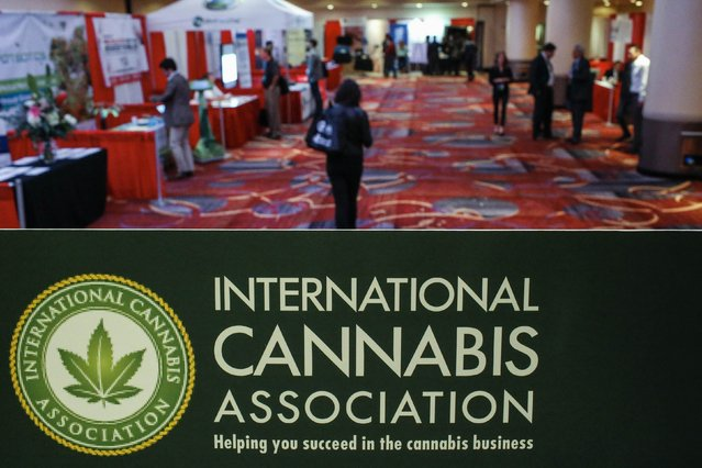 People attend the International Cannabis Association Convention in New York, October 12, 2014. (Photo by Eduardo Munoz/Reuters)