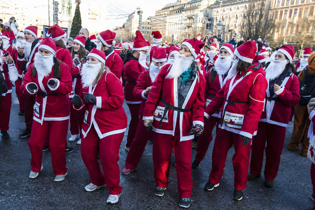 Participants in the Stockholm Santa Run warming up at Kungstradgarden on December 10, 2017 in Stockholm, Sweden. (Photo by Michael Campanella/Getty Images)