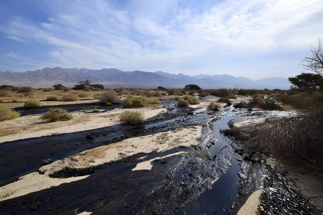 Crude oil streams through the desert in south Israel, near the village of Beer Ora, north of Eilat December 4, 2014. (Photo by Yehuda Ben Itach/Reuters)