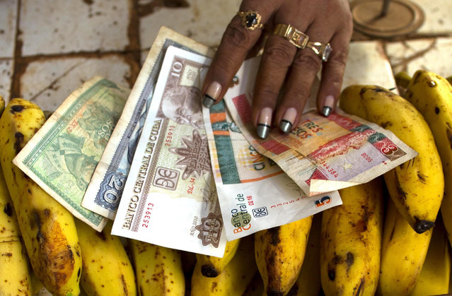 """In this August 30, 2013 file photo, a food vendor spreads out convertible pesos, known as CUCs, the two bills on the right, and regular Cuban pesos at her stand in a vegetable market in Havana, Cuba. There is a dual-currency system featuring one type of Cuban peso worth 4 cents and another that is nearly a dollar. The system was designed to use the less valuable """"national money"""" to insulate the state-run, egalitarian internal market while trade with the outside world is done with pricier """"convertible pesos"""". President Raul Castro called for elimination of the dual currencies from the beginning of his presidency, but never got around to it. (Photo by Ramon Espinosa/AP Photo)"""