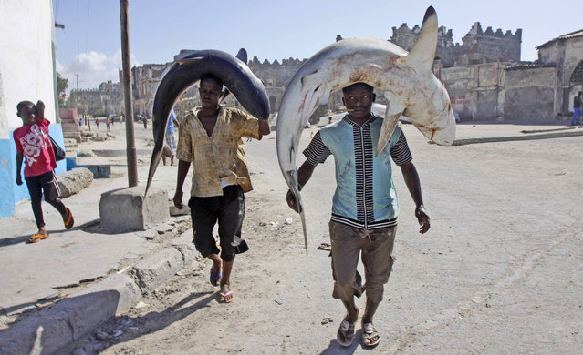 Somali fishermen carry their catch on their heads as they walk to the market in Mogadishu, Somalia, Friday May, 17, 2013. (Photo by Farah Abdi Warsameh/AP Photo)
