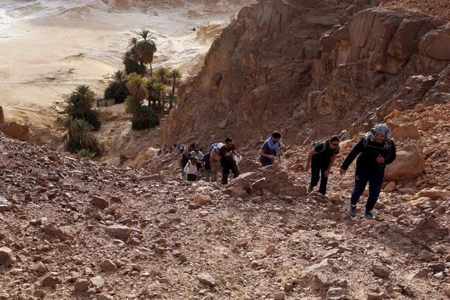 Hikers walk around the Ain Hudra area in southern Sinai, Egypt, November 20, 2015. (Photo by Asmaa Waguih/Reuters)