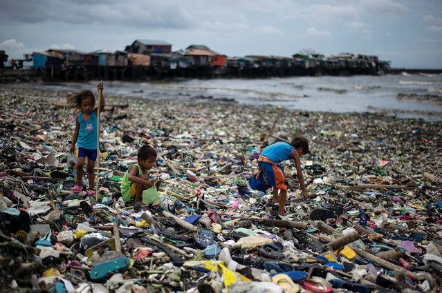 Children collect plastic water bottles among the garbage washed ashore as a result of a storm surge of typhoon Haima at the Manila Bay on October 20, 2016. One of the most powerful typhoons to ever hit the Philippines destroyed houses, tore roofs off schools and ripped giant trees out of the ground on October 20, but there were no immediate reports of deaths. (Photo by Noel Celis/AFP Photo)