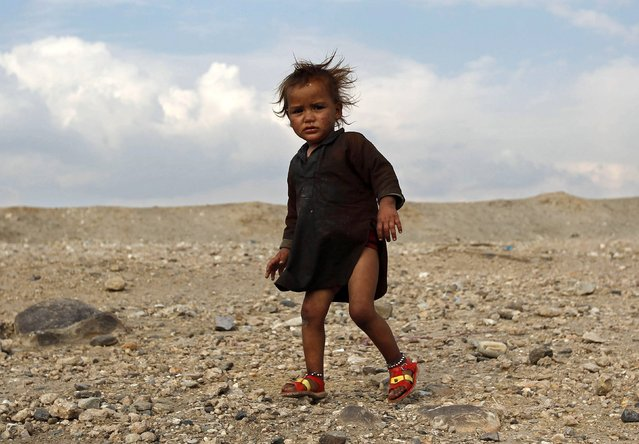 An Afghan internally displaced child stands outside a shelter on the outskirts of Jalalabad city, January 26, 2015. (Photo by Reuters/Parwiz)