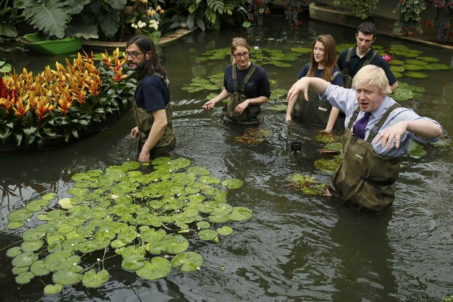 London mayor Boris Johnson gestures as he plants waterlilies at the Royal Botanic Gardens in Kew, west London March 16, 2015. (Photo by Stefan Wermuth/Reuters)
