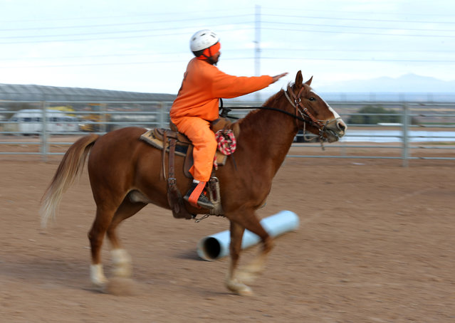 An inmate rides a wild horse over an obstacle course as part of the Wild Horse Inmate Program (WHIP) at Florence State Prison in Florence, Arizona, U.S., December 2, 2016. (Photo by Mike Blake/Reuters)