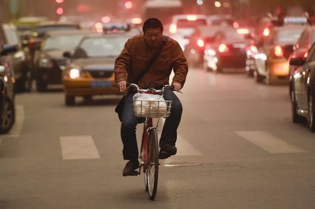 A man rides his bike during a sandstorm in Beijing on April 15, 2015.  Beijing's meteorological observatory issued a yellow sandstorm warning for the Chinese capital.  Sandstorms are an annual occurrence in arid northern China in the spring, when temperatures start to rise, stirring up clouds of dust that can travel across China to South Korea and Japan, and even to the United States. (Photo by Fred Dufour/AFP Photo)