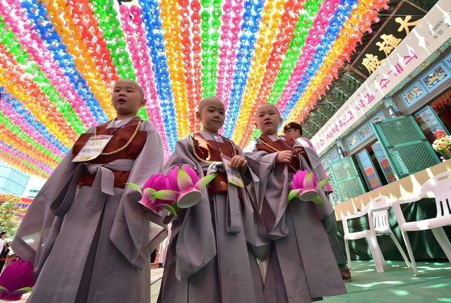 """South Korean young novice monks stand under lotus lanterns after having their heads shaved during a ceremony entitled """"Children Becoming Buddhist Monks"""", at the Jogye temple in Seoul on May 2, 2016. Following the ceremony the children stay at the temple where they are taught about Buddhism, for two weeks, until Buddha's birthday on May 14. (Photo by Jung Yeon-Je/AFP Photo)"""