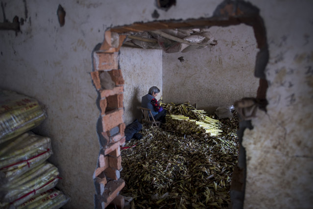 This picture taken on April 12, 2017 shows a woman cleaning bamboo shoots at a market in Taihuyuan village near the city of Lin'an, Zhejiang Province. (Photo by Johannes Eisele/AFP Photo)
