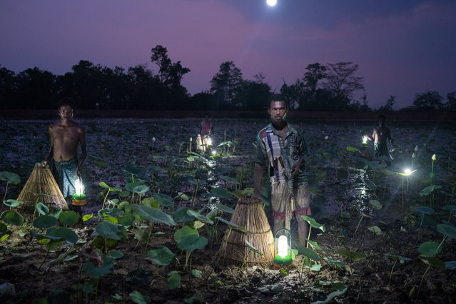 Solar Portraits, India, by Ruben Salgado Escudero. Villagers trap fish using cone-shaped baskets and solar light in Odisha. Fewer than half of the state's 42 million residents use grid electricity. Roughly 1.1 billion people in the world live without access to electricity, and close to a quarter of them are in India. The portrait was set up using solar lights as the only source of illumination. (Photo by Ruben Salgado Escudero/2016 Atkins CIWEM Environmental Photographer of the Year)