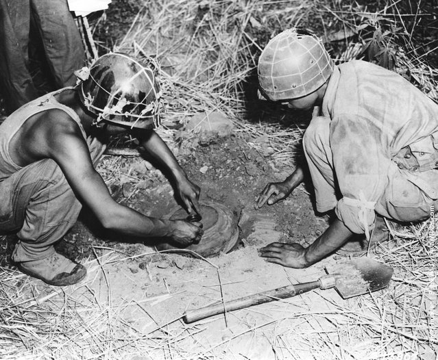 Two soldiers of the 1st Division of the South Korean Army laying anti-tank mines during the Korean War, August 1950