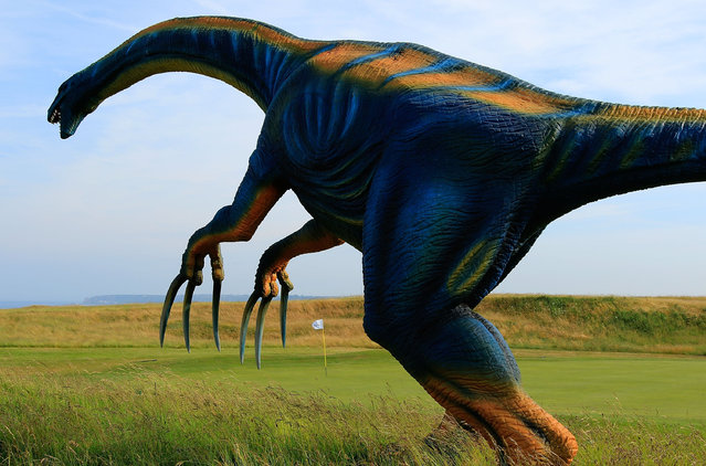 A dinosaur in the rough on the 18th fairway during the first round of the Acorn Jersey Open played at La Moye Golf Club on June 9, 2016 in St Helier, Jersey. (Photo by Phil Inglis/Getty Images)
