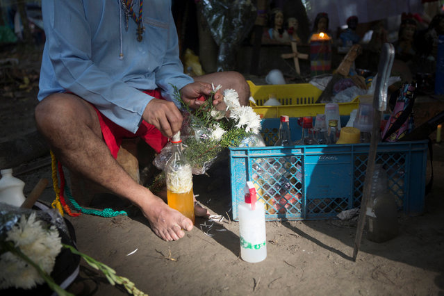 A man prepares a purification liquid with liquor, essences and flowers petals at a camp at the Sorte Mountain on the outskirts of Chivacoa, in the state of Yaracuy, Venezuela October 11, 2015. (Photo by Marco Bello/Reuters)