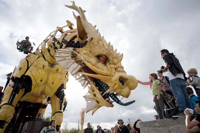 "A mechanical horse-dragon made of wood and steel is presented to the public in Nantes, western France on August 26, 2014. This horse-dragon, created by the French artist Francois Delaroziere of ""Les Machines de l'île"" (The Machines of the Isle), is the hero of the show ""Long Ma"" which will be presented in Beijing on October 17, 2014 as part of the fiftieth anniversary of the relationship between France and China. (Photo by Jean-Sebastien Evrard/AFP Photo)"