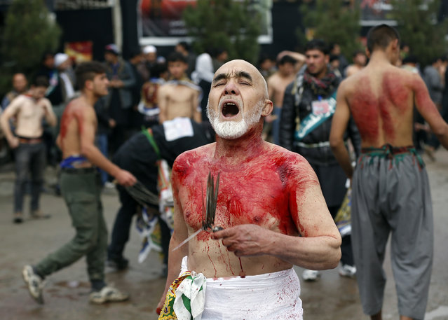 An Afghan Shi'ite Muslim flagellates himself during an Ashura procession in Kabul November 3, 2014. (Photo by Omar Sobhani/Reuters)