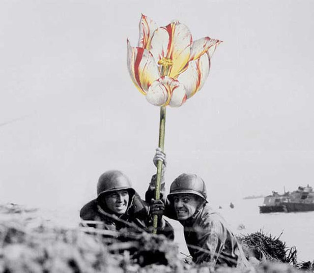 Flowers Of War By Mister Blick