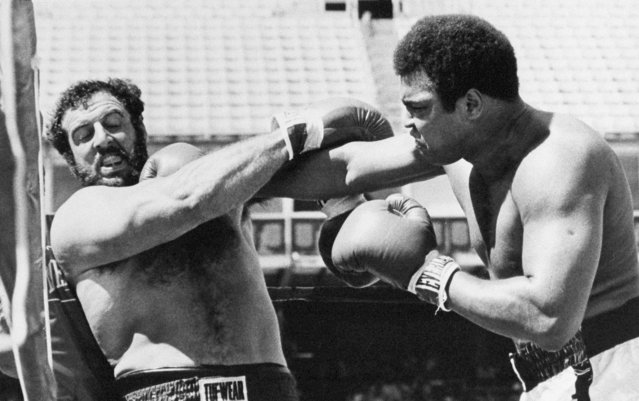 In this July 14, 1979 file photo taken by Associated Press photographer Ed Andrieski, Muhammad Ali, right, scores a big right against Lyle Alzado's chin during the first round of the exhibition boxing match between the former heavyweight champ and Denver Broncos defensive end in Denver, Colo. Andrieski, a retired AP photographer who covered nearly every major news story in Colorado for more than three decades, was found dead on Tuesday, January 16, 2018. He was 73. (Photo by Ed Andrieski/AP Photo)