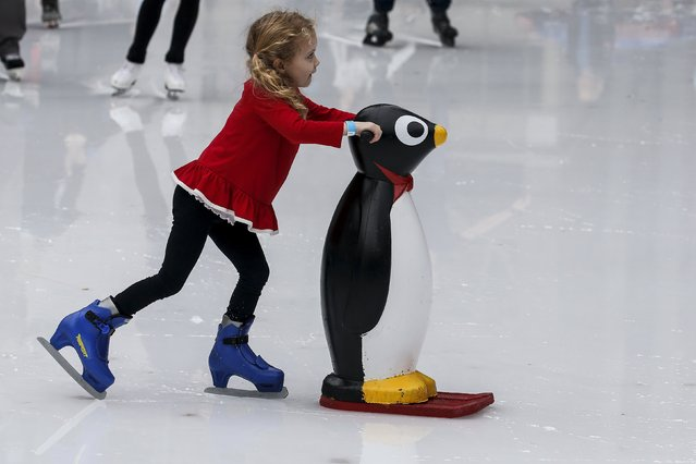 A child uses a penguin skating aid at the skating rink in Bryant Park during unseasonably warm weather on Christmas Eve in the Manhattan borough of New York December 24, 2015. (Photo by Carlo Allegri/Reuters)