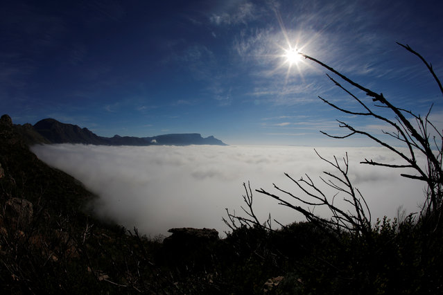 SOUTH AFRICA: The back of Table mountain is seen as seasonal fog covers the city in Cape Town, South Africa, May 29, 2016. (Photo by Mike Hutchings/Reuters)