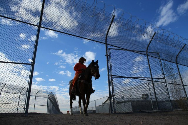 An inmate rides a wild horse as part of the Wild Horse Inmate Program ( WHIP) at Florence State Prison in Florence, Arizona, U.S., December 2, 2016. (Photo by Mike Blake/Reuters)
