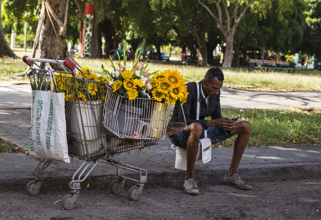 A flower vendor takes a break to surf the internet on his smartphone in Havana, Cuba, Thursday, December 6, 2018. For the first time, Cubans are now able to sign up for 3G internet service for their mobile phones, with packages ranging from 600 megabytes for about $7 to four gigabytes for about $30 month. (Photo by Desmond Boylan/AP Photo)