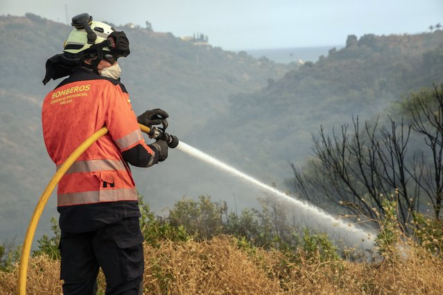 A forest firefighter works in a wildfire in Estepona, Spain, Thursday, September 9, 2021. Nearly 800 people have been evacuated from their homes and road traffic has been disrupted as firefighting teams and planes fight a wildfire in southwestern Spain. (Photo by Sergio Rodrigo/AP Photo)