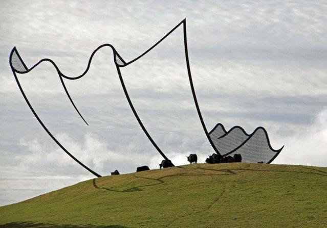 New Zealand Cartoon Kleenex Sculpture By Neil Dawsonby