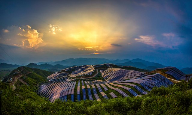 The sun sets over a photovoltaic solar power station in Songxi, China on August 24, 2016. (Photo by Feature China/Barcroft Images)