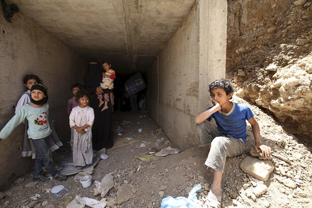 Displaced people leave for a another safe shelter after they lived few days in an underground water tunnel after they were forced to flee their homes due to ongoing air-strikes carried out by the Saudi-led coalition in Sanaa May 2, 2015. (Photo by Mohamed al-Sayaghi/Reuters)