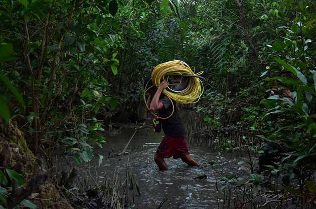 A small-scale miner carrying plastic tubes used for breathing while looking for gold under the mud on March 22, 2017 in Paracale, Philippines. In the mining town of Paracale, about 350 kilometers south of Manila, a day's work of digging and sifting through hundreds of kilos of sand and clay, an artisanal miner can gather about a quarter of a gram of gold dust, enough to earn $5, enough for a family to go through the day's needs. For decades, local residents at Paracale town work in hazardous conditions scavenging under the earth and diving into tunnels filled with mud using only makeshift tools to mine for gold, often placing their health and lives at risk. Ban Toxics, a local NGO working at these sites claims that artisanal mining is a poverty driven industry and that small-scale miners typically work in harsh conditions with no proper training, protection, and pollution control methods. Local reports indicated the country produced about 18 tons of gold at a market value of over $700 million in 2014 while 80% of the gold comes from artisanal and small-scale mines which operate without a government license. The Philippines holds the largest copper-gold deposit in the world and is the fifth most mineral-rich country for gold, nickel, copper, and chromite, but massive environmental destruction prompted the new Department of Environment and Natural Resources secretary, Gina Lopez, to threaten many large-scale mining operations for closure. (Photo by Jes Aznar/Getty Images)