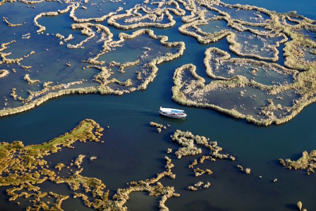 A tour boat goes along the natural labyrinths formed by reeds in Dalyan Delta, in Ortaca district in the south-western Turkish province of Mugla on October 07, 2019. Dalyan Canal, which is composed of reeds, swamp, freshwater and salty water, draws tourists' attention for the last years. Dolmush boats, providing a touristic service in Dalyan Canal take tourists from Koycegiz and Ortaca's Dalyan neighborhood to Iztuzu Beach, watching the herons among the reeds, caretta carettas and Dalyan mullet. (Photo by Mustafa Ciftci/Anadolu Agency via Getty Images)