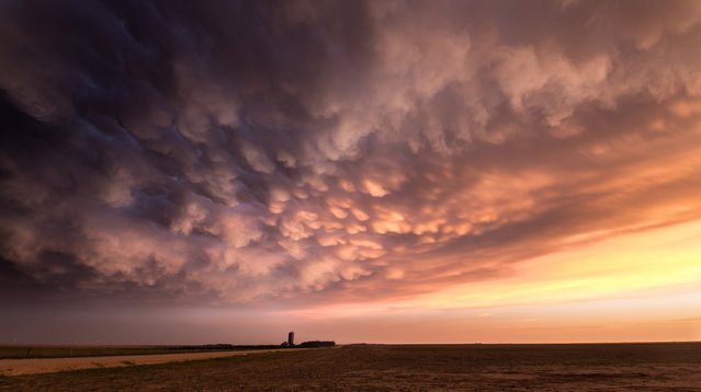 Mammatus clouds at sunset, west of Leoti, Kansas on May 22, 2016. (Photo by Maximilian Conrad/Caters News)