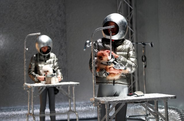 Models and dogs present creations from the Moncler Autumn/Winter 2020 collection during Milan Fashion Week in Milan, Italy on February 19, 2020. (Photo by Alessandro Garofalo/Reuters)