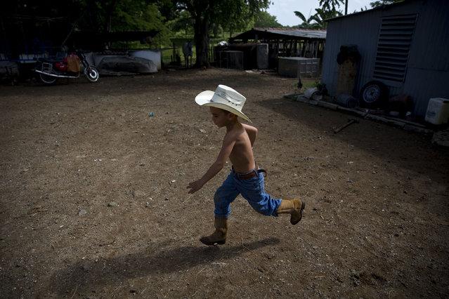 In this July 29, 2016 photo, 5-year-old cowboy David Obregon runs across the yard of his parents farm in Sancti Spiritus, central Cuba. (Photo by Ramon Espinosa/AP Photo)