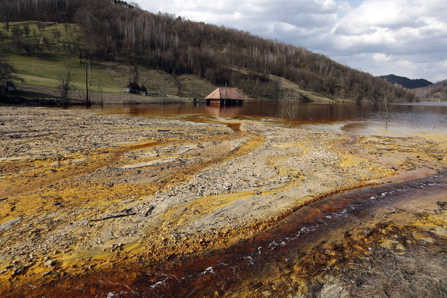 A polluted lake, tainted with cyanide and other chemicals, is seen covering Geamana village near Rosia Montana, central Romania, March 24, 2014. Romania's lower house rejected a bill that would have enabled Canada's Gabriel Resources to set up Europe's biggest open-cast gold mine in the small Carpathian town of Rosia Montana, putting the project on hold indefinitely. (Photo by Bogdan Cristel/Reuters)