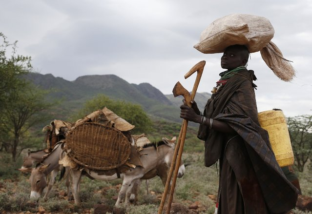 A Turkana woman carrying a load on her head stands by donkeys as she and her family relocate to another place in northwestern Kenya inside the Turkana region of the Ilemy Triangle September 26, 2014. (Photo by Goran Tomasevic/Reuters)