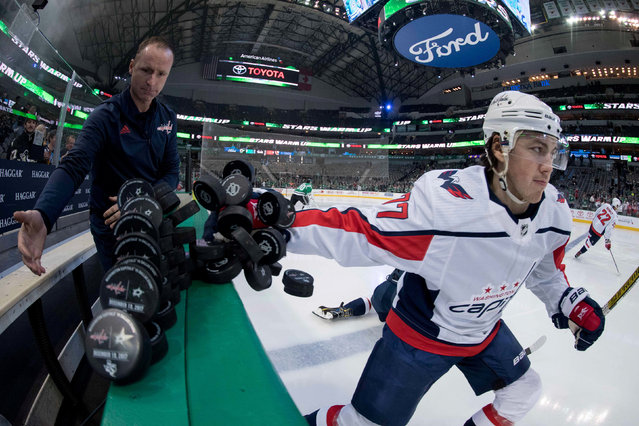 Washington Capitals right wing T.J. Oshie (77) scoops the pucks on to the ice before the game against the Dallas Stars at the American Airlines Center in Dallas, TX, USA on December 19, 2017. (Photo by Jerome Miron/USA TODAY Sports)