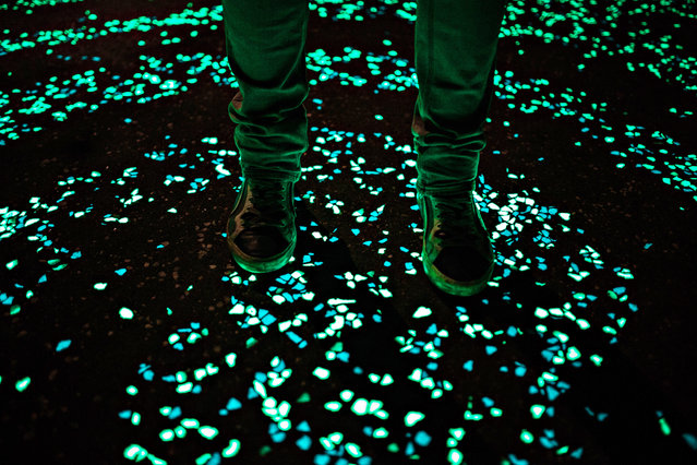 The first glow-in-the-dark bicycle path. (Photo by Pim Hendriksen/Studio Roosegaarde)