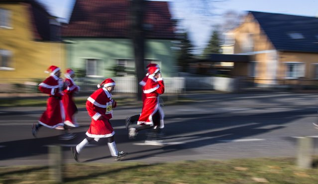 Runners dressed as Father Christmas take part in the Nikolaus Lauf (Santa Claus Run) in the east German town of Michendorf, southwest of Berlin December 7, 2014. (Photo by Hannibal Hanschke/Reuters)