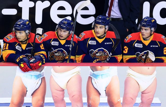 Patrick Fellows #21, Allan McShane #26, Carson Edwardson #8 and Shaun Bily #23 of the Erie Otters sit on the bench during the first period of an OHL game against the Niagara IceDogs at the Meridian Centre on October 6, 2016 in St Catharines, Ontario, Canada. (Photo by Vaughn Ridley/Getty Images)
