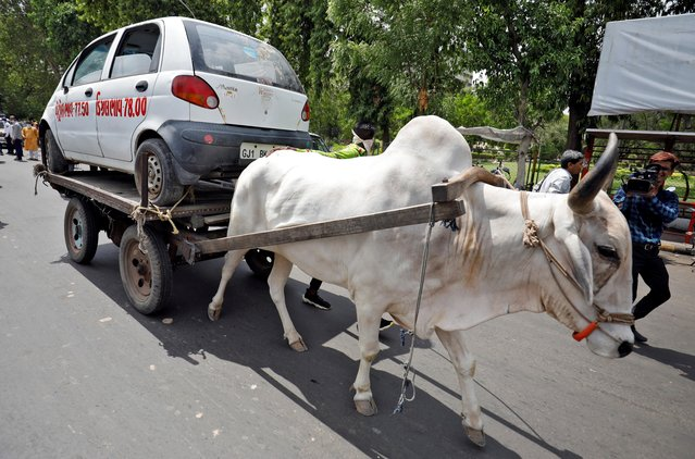 A car is carried on an ox-driven cart as part of a protest, organized by India's main opposition Congress party, against the hike in fuel prices, in Ahmedabad, India, June 29, 2020. (Photo by Amit Dave/Reuters)