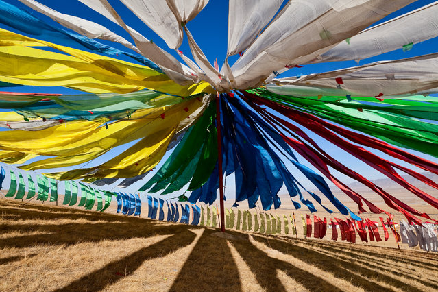 """Vivacity"". Colours and shadows dancing in the wind. Location: Near Qinghai Lake, Qinghai province, People's Republic of China. (Photo and caption by Juan Aguilar/National Geographic Traveler Photo Contest)"